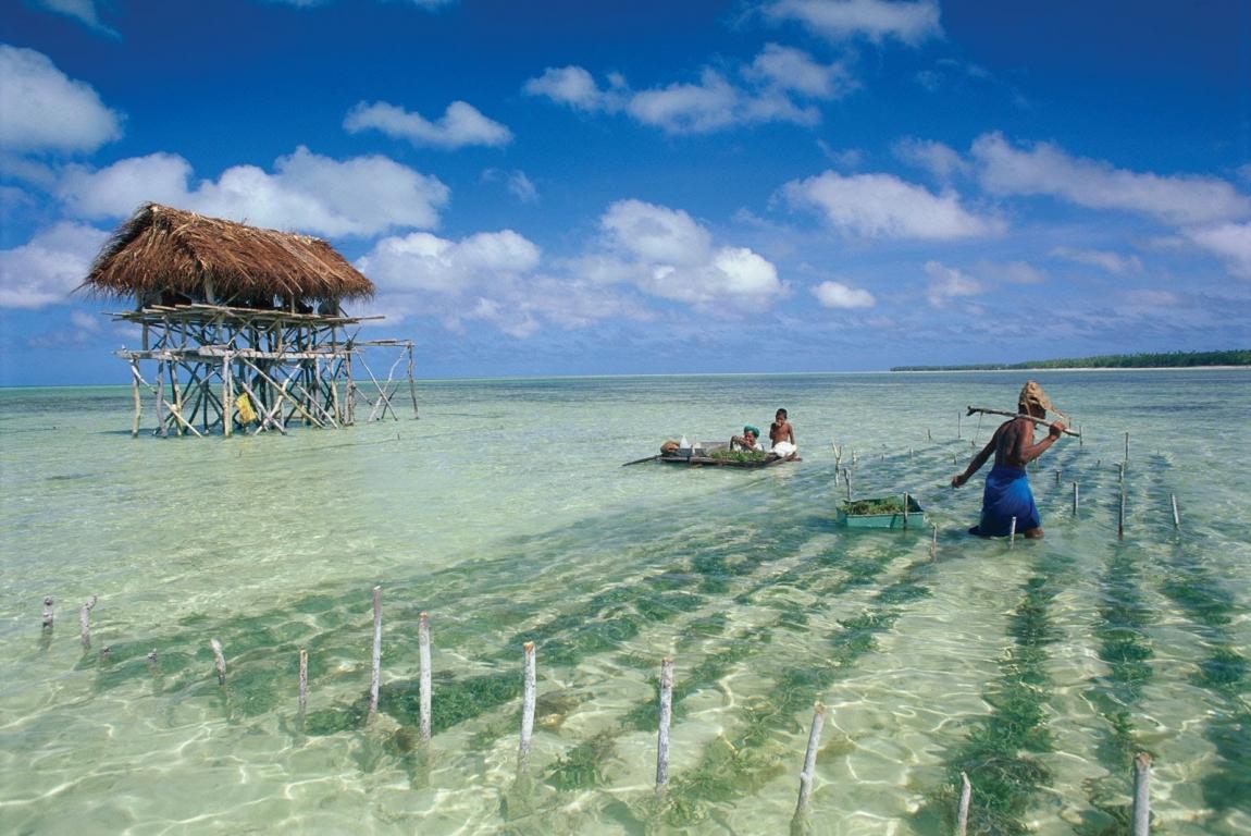Ten fun facts about Kiribati - ITAP World